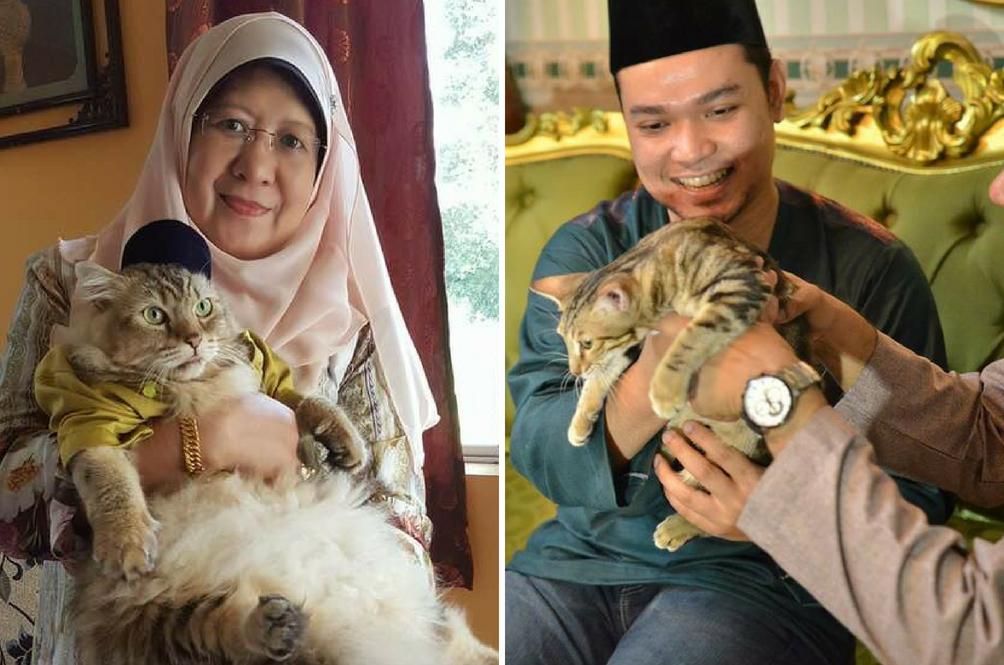 Amboi Dia Pun Nak Beraya, Siap Berbaju Melayu Lagi