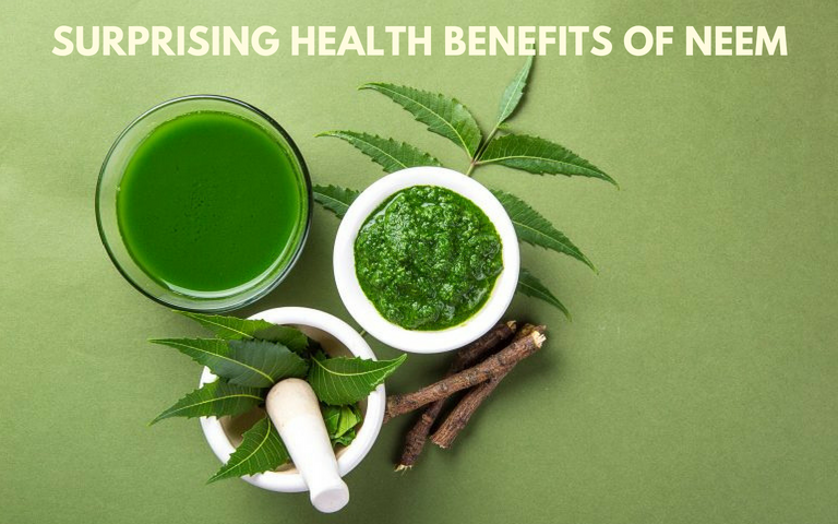 5 Surprising Health Benefits of Neem | Astro Ulagam